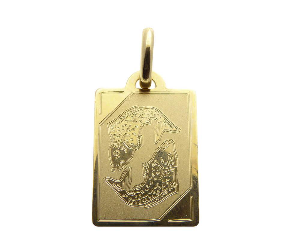 Gouden vissen sterrenbeeld hanger
