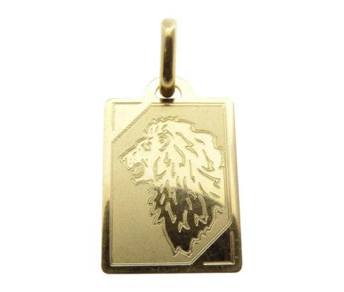 14 karaat geel gouden leeuw sterrenbeeld hanger