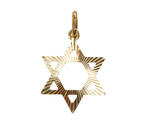Gouden David ster hanger