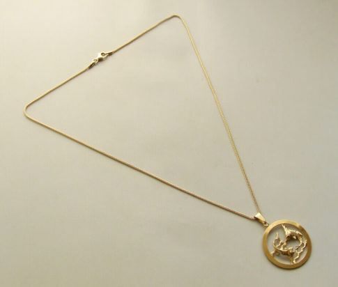 Gouden vissen sterrenbeeld hanger met ketting